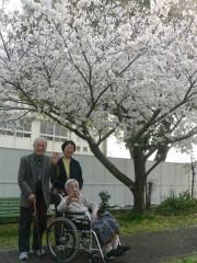 満開の桜に笑顔があふれます(^^♪